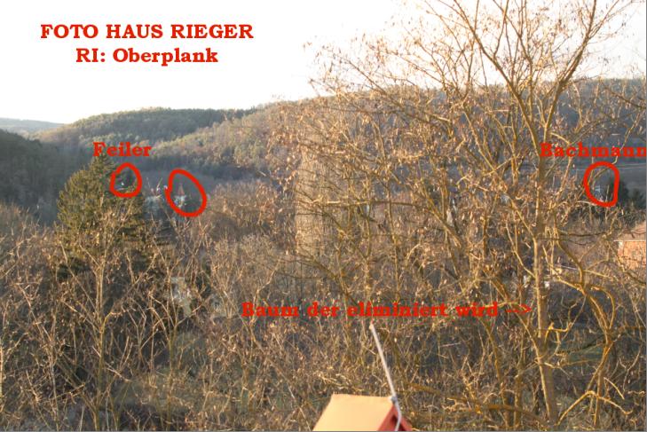 rieger-oberplank